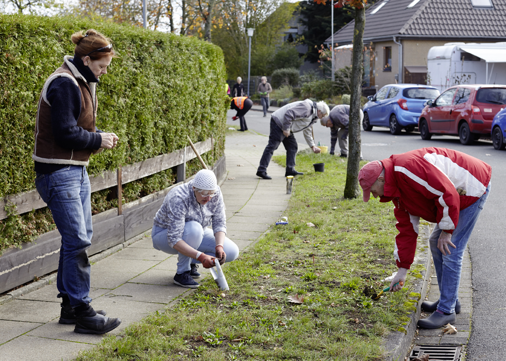 Mehr als 40 Tostedter Bürger*innen halfen beim Pflanzen der Frühblüher