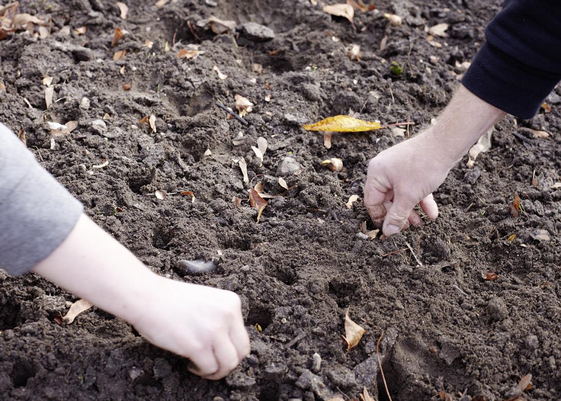 Ein bisschen die Hände schmutzig machen, gehört auch dazu