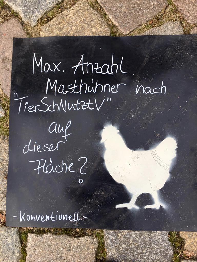 Max Anzahl Masthühner auf einem Quadratmeter Fläche?